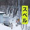 北海道は寒くない