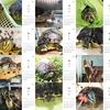 ◆ケビケビ・カレンダー2019