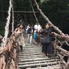 [三好旅]かずら橋体験