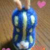 羊毛・アオウミウシちゃん