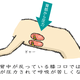 イラスト超図解!腹筋ローラーで効果的にバキバキにする8つの方法とは!(膝コロ編)