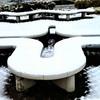 台風で初雪