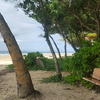 ケアンズのビーチ~MISSION BEACH編~ちょっと医療制度についても説明します