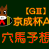 【GⅢ】京成杯AH 結果 回顧