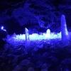 【体験レポ】真夏なのに真冬?? 山梨の忍野八海・鳴沢氷穴・富岳風穴へ