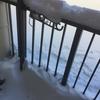 北海道の雪は死ねる