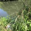 『炭焼土池』静岡県掛川野池群バス釣り完全攻略マップ