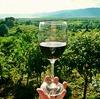 山梨塩ノ山ワインフェスで樽熟成を舌鼓!おもてなしの心と桃源郷の春