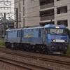 第890列車 「 新鶴見界隈で貨物列車を狙う 2019・夏 ヨコハマ撮り鉄紀行その1 」