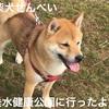 神戸のお散歩スポット?!垂水健康公園に行ったよ