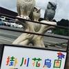 掛川花鳥園🐣