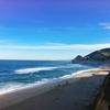 【ドライブ|おすすめルート】サンフランシスコから日帰りで巡るカリフォルニアのビーチ(ハイウェイ1号線)