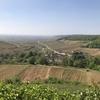 ブルゴーニュで本場ワインの試飲をしたら予想以上に感動した話