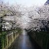 2020/04/02 中目黒散歩 04 緑橋/天神橋/千歳橋/柳橋/記念碑/目黒橋