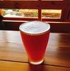 奥多摩駅前 ビアカフェバテレ(Beer Cafe VERTERE)登山帰りにクラフトビールをいただける幸せ