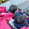 双子用ベビーカーを選ぶ際のポイントとおすすめベビーカー