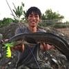 台湾の水路で雷魚(プラーチョン)釣り