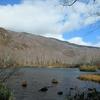 ◆'18/11/11     晩秋の鶴間池②…まずは奥鶴間へ。