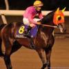 川崎競馬 穴馬予想【エンプレス杯JpnⅡ&全レースの穴馬を予想】3月1日
