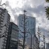 3月11日(水)渋谷での取材と、何十年ぶりに見た映画。
