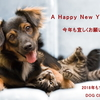 A Happy New Year - 新年のご挨拶