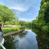 北の丸公園の池(東京都千代田)
