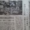 今日の紋別港鮭釣り情報   /今年のカラフトマスは豊漁!!/