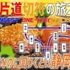 (31)少しややこしいけどめちゃくちゃ楽しい静岡縦断【最長片道切符の旅2021】[新横浜→豊橋]