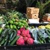 ハワイ旅行3日目 地元の雰囲気が味わえるマーケットや屋台へ!まさかのハプニングも発生!?