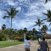 【ズボラな20代OLがいく】ハワイ旅行〜4日目〜ウェット アンド ワイルド ハワイ【旅行紀】
