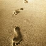 ちっちゃなちっちゃな一歩を踏み出せるかどうかで人生は決まる