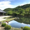 (Kyoto-30/Tenryuji Temple)日本美味しいもの巡り Japan delicious food and wine tour