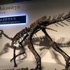 都民の日にお休みをもらい、恐竜博に行ってみた