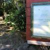 たっぷりの自然に囲まれた沖縄カフェ「fuu cafe」(フウカフェ)