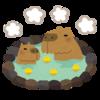 最近、少しずつ元気になってきた理由は、ひょっとしてサウナと温泉かも?!温泉の効果を語ります♪
