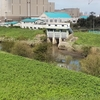 鴻沼川~(霧敷川~逆川)~鴨川