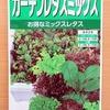 5種類のレタスが混ざった「ガーデンレタスミックス」を半水耕栽培。ベビーリーフとして収穫予定です