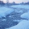極寒の幻想的な世界 北海道更別村 霧氷