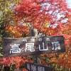 高尾山 紅葉の見頃は? 2016 都内で紅葉を楽しめる人気スポット