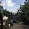 【エチオピア】コーヒー発祥の地