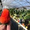 千葉成東のイチゴ狩りは電車で行くならここが良い