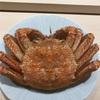 佐渡産の毛蟹