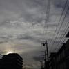 595  今日は曇り