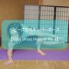 【ヨガ】アームバランス系「ベビーグラスホッパーポーズ」のやり方をレポート!