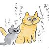 猫たちの健康街道はつづく(カリカリ編)