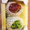【ふるさと納税】大粒ぶどう2種セット シャインマスカット入り (合計約1.2kg) @岡山県真庭市
