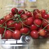 日本原産の果物って、何があるか知っていますか?
