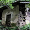 中古住宅を買う時はシロアリ被害に要注意!物件の被害を確認する方法