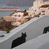 2018年5月ギリシャ旅行7日目 サントリーニ島からアテネ