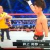 現役日本人最強ボクサーは誰だ!(第3回/2017年6月) 今回は様々な角度から検証してみました